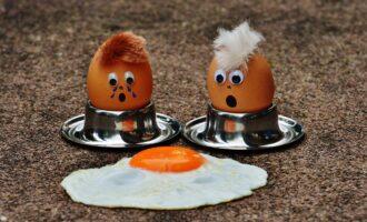 eggs 1364869 1280